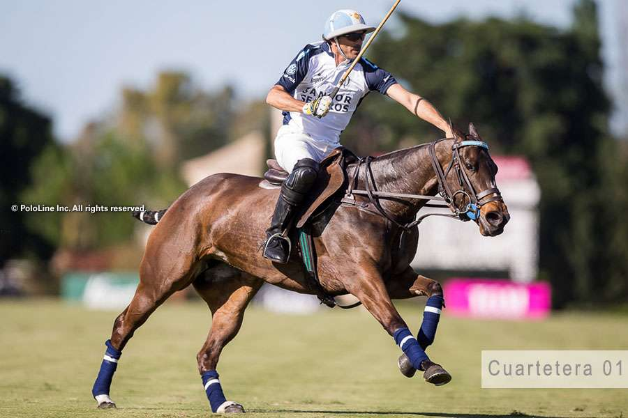 Cuartetera 01 at Triple Crown. Photo Credit PoloLine Inc