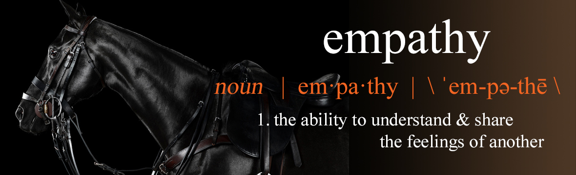 Equine-Empathy.com committed to imrpoving the life of the polo pony